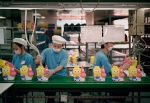 A-gallery-showing-Chinese-factory-workers-and-the-toys-they-make16