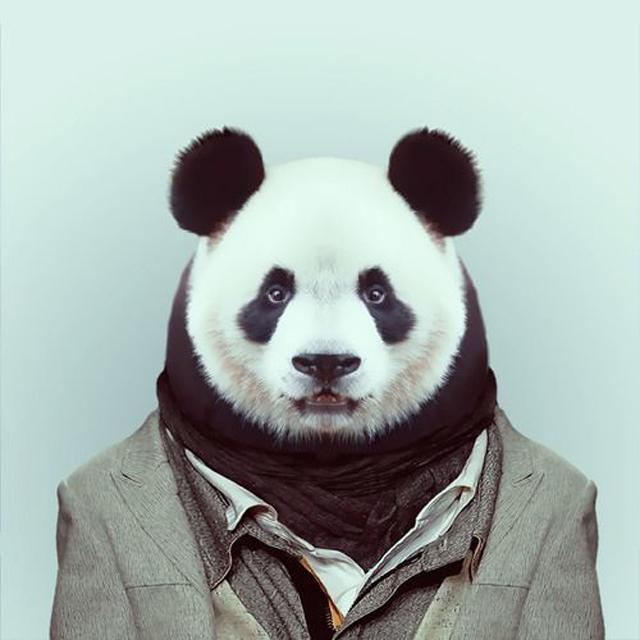 Fashion-Zoo-Animals10