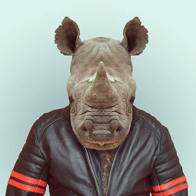 Fashion-Zoo-Animals17