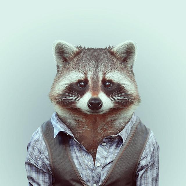 Fashion-Zoo-Animals20