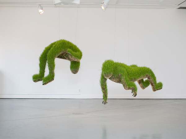 life-of-grass-14