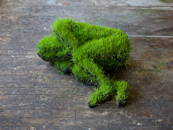 life-of-grass-3